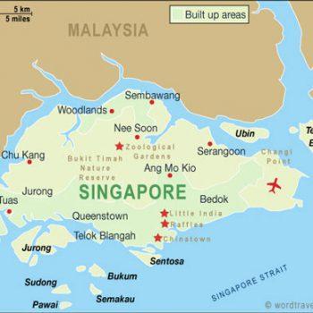 Singapurski zaklinacz wężogłowów